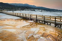 Boardwalk over the waters and landscape of the hot springs at Mammoth Hot Springs, Yellowstone National Park, in Wyoming, Mineral deposits on the shor...