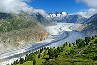 Aletsch Glacier. The Aletsch Glacier is the largest glacier in the Alps, with a length of around 23km and covering more than 120 square kilometres. It...