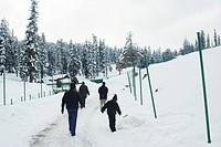 Snow clad  Kongdoor 10050´ ; Gulmarg ; Jammu & Kashmir ; India