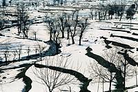 Winter scene ; Tangmarg (2200 m) Gulmarg ; Jammu & Kashmir ; India