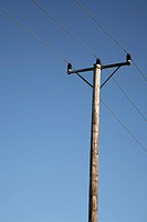 Wooden electric poles with electric wires against blue sky , Sweden