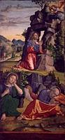 Jesus in the Garden, by Paolo Cavazzola (1486-1522).  Verona, Castelvecchio (Art Museum)