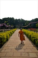 Monk bhikkhu or bhiksu Buddhist monastic walking at Sarnath , Varanasi , Uttar Pradesh , India