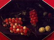 Still life with cherries and strawberries, by Luca Forte (1610-1670).  Naples, Museo Nazionale Della Ceramica 'Duca Di Martina' (Pottery Museum)
