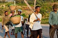 farmers, Fort Dauphin , Madagascar