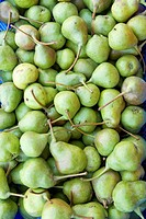 Fruits , Pears , Kodaikanal popularly known as Kodai , Tamil Nadu , India