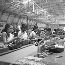 Women working in the telephone factory , manufacturing of telephone instruments at Bangalore , Karnataka , India , year 1950 NO MR