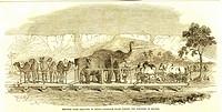 Railway from Calcutta Kolkata to Delhi , Baggage train passing the fortress of Rhotas , India