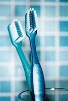 Toothbrushes Side by Side in Glass