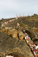 Queues of people coming down from hills of Shravanabelagola attending Mahamasthakabhisheka Jain festival , Hassan district , Karnataka state , India