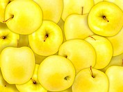 Background of heap fresh yellow apple