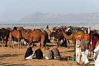 Pushkar Mela ; Rajasthan ; India