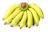 Banana bunch on the white background