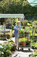 Portrait of a woman browsing the plants at a gardening store