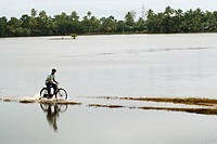 Man on bicycle going through road covered with water due to monsoon , Alappuzha Alleppey , Kerala , India