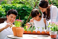 Oriental parents teaching child watching plants by magnifying glass