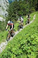 Go with the bike in the nationalpark lime alps, Upperaustria, Austria