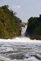 Murchison Falls, Nile, Uganda.
