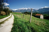 Torch  Pieve d'Alpago  Italy  Green pastures surrounded by mountains of the Dolomites in the Alpago region