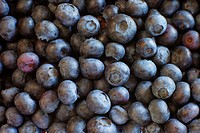 Organic blueberries - one of the Superfoods, great for brain function
