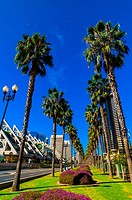 Harbor Drive San Diego Convention Center on left, San Diego, California USA