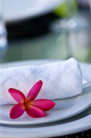 Towel and Flower on Plate