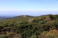 Landscape in Jeju Island Korea