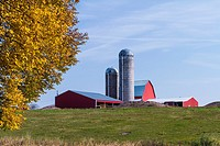 A dairy farm with barns and silo near Minocqua, Wisconsin, USA