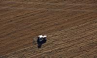 Tractor on field, Messkirch, Oberschwaben, Baden_Wuerttemberg, Germany, Europe