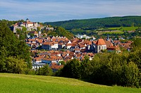 Cityscape with Rosenberg Fortress and parish church, Kronach, Upper Franconia, Bavaria, Germany