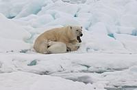 Svalbard Archipelago, Barents Sea, Norway.