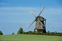 Farver Mühle, Farve