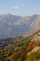 Europe, Montenegro, Kotor, View of Bay of Kotor