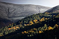 Larrau mountain pass in autumn - Salazar Valley - Pyrenees - Navarra - Spain - Europe