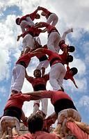 Colla Vella dels Xiquets de Valls, ´Castellers´ (human towers), a Catalan tradition. Falling tower. Doctor Robert street, La Bisbal del Penedès, Tarra...