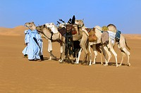 Tuaregs with her Camels; Tuareg Caravan; Libyan Arab Jamahiriya; Libyan Desert