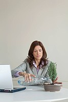 Mature businesswoman watering bonsai tree at work desk