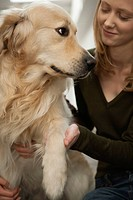 Young woman petting golden retriever