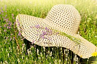 Summer hat over lavender flowers against sunlight