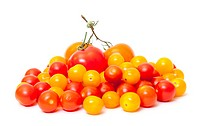 Heap Multicolored Ripe Fresh Cherry Tomatoes