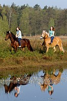 Haflinger Horse and Arbab-mix. Two young women riding at the edge of a pond
