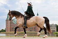 Frederiksborger. Dun stallion with rider in historic costume trotting in front of Frederiksborg Palace, Danmark