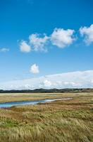 De Slufter coastal nature reserve Texel