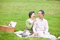 middle aged couple having a picnic