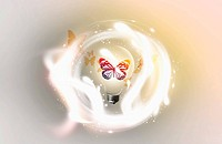 mysterious bright image featuring butterfly inside a light bulb