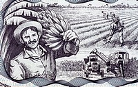 Agricultural Scene on 20 Pesos 2006 Banknote from Cuba.