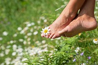 Austria, Altenmarkt-Zauchensee, Mid adult woman holding flower between toes