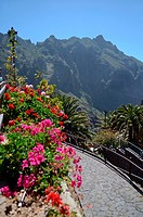 Masca Valley (Valle de Masca), Tenerife, Canary Islands.