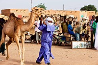 Niger, Air Region, Man Wearing Traditional Clothing With Camel On Livestock Market; Agadez