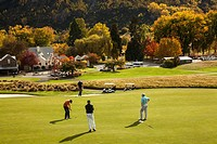 Golfer putts, Millbrook golf resort, autumn between Arrowtown and Queenstown, Otago, New Zealand